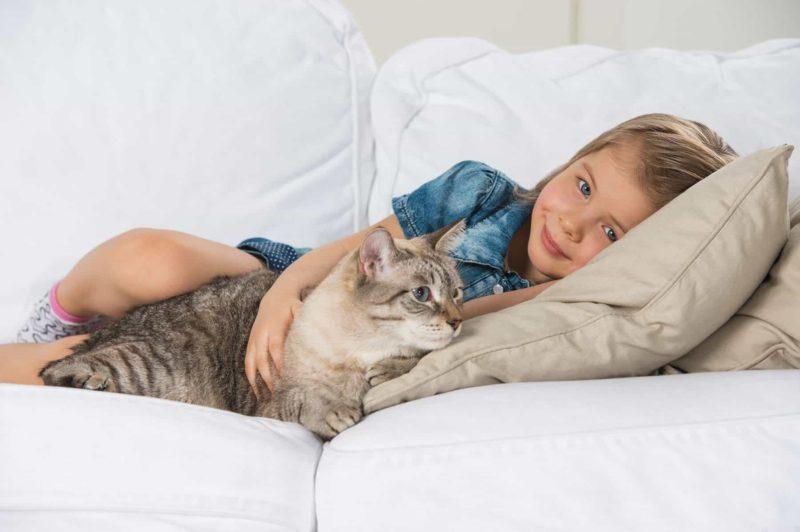 Ile trwa ciąża kota i jak poznać, że Twoja kotka jest w ciąży?