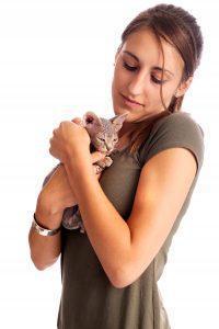 Co to jest FIP u kota, jak długo rozwija się choroba i jak leczyć FIP?