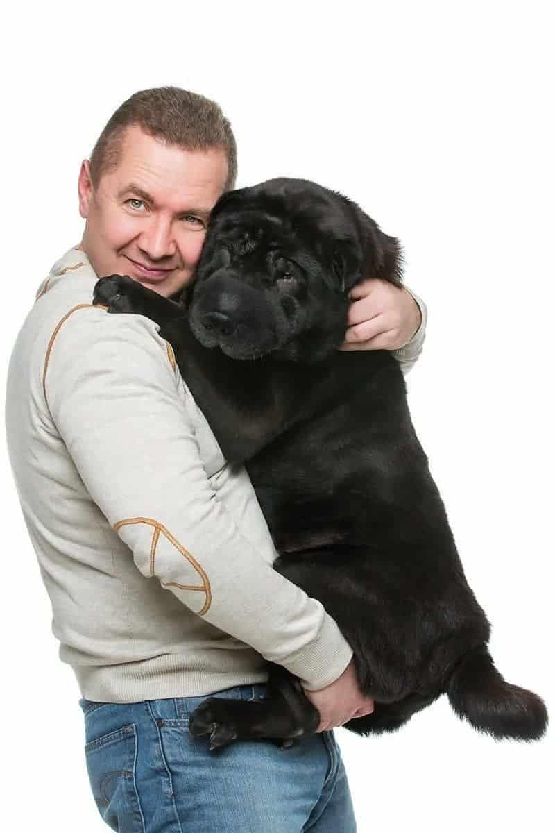 Jak sprawdzić czy pies jest za gruby?
