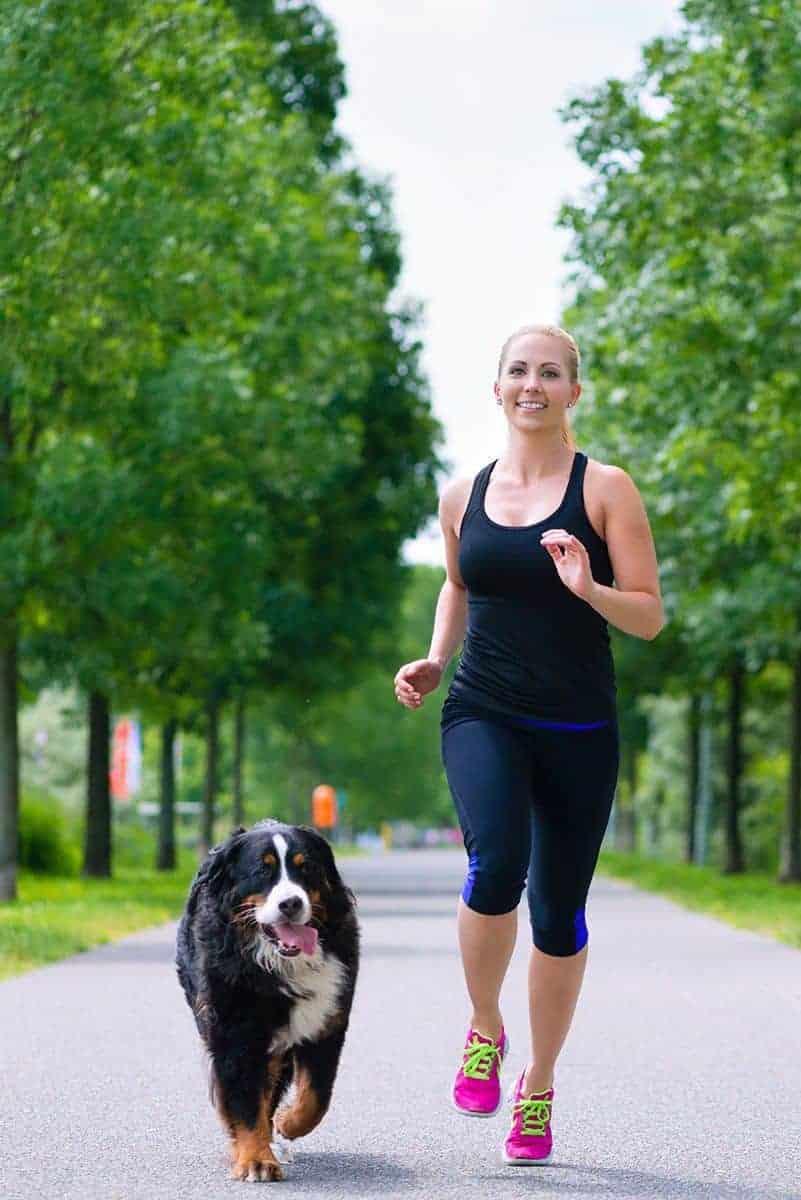 Jak utrzymać prawidłową wagę psa?