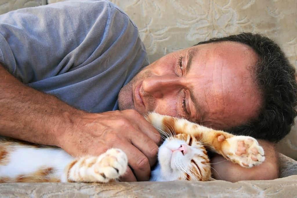 Które koty są najbardziej narażone?