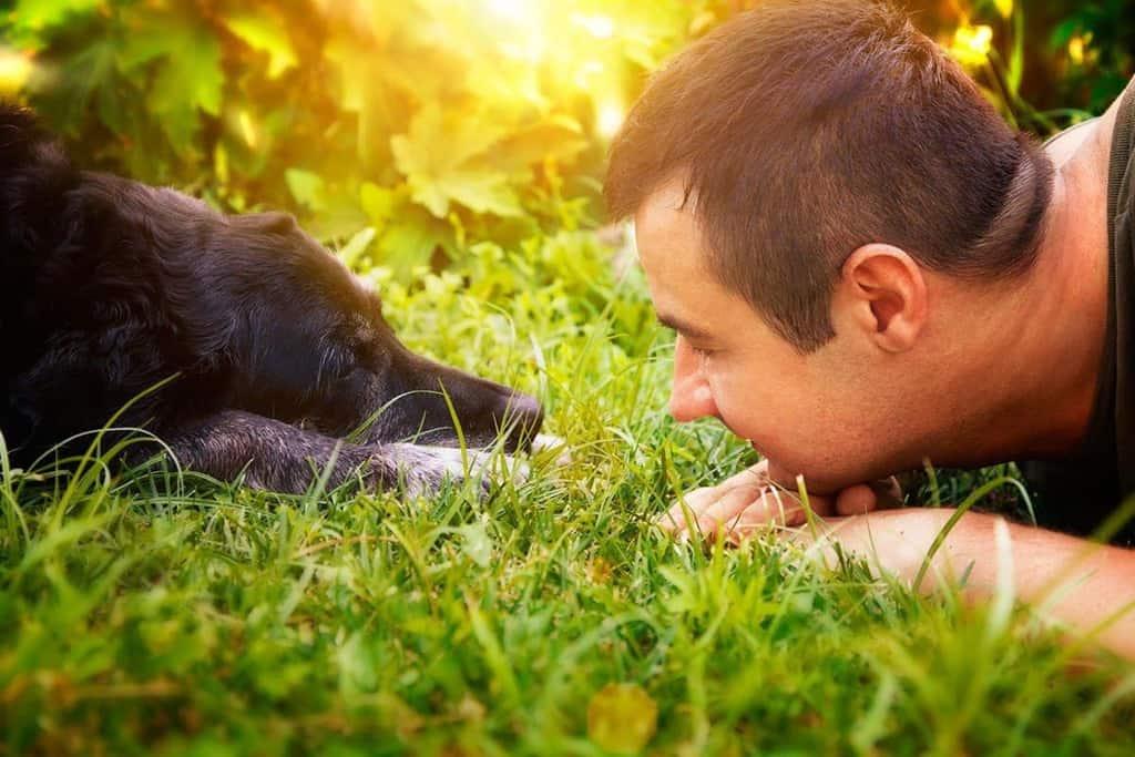 Parwowiroza u psa objawy