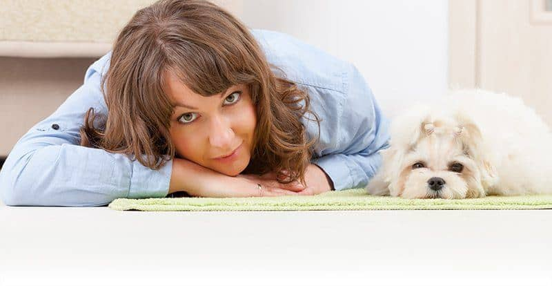 Jak zapobiegać lękowi separacyjnemu u psów?