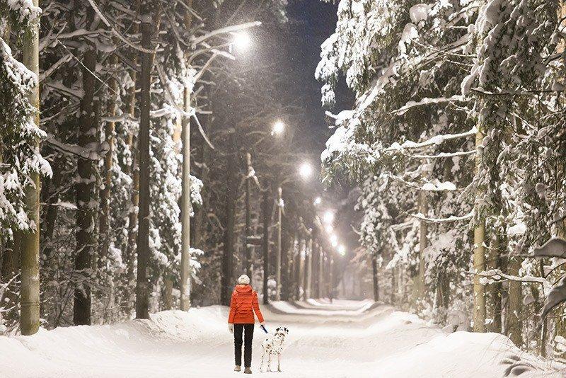 Długi spacer z psem