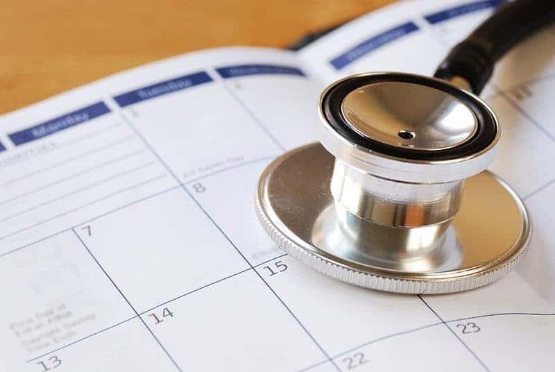Kalendarz szczepień psa