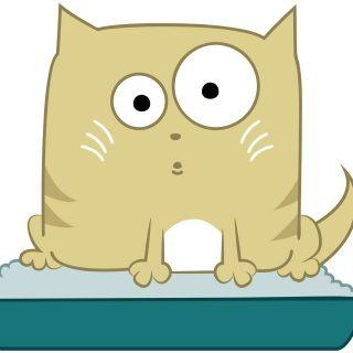 Kuweta dla kota