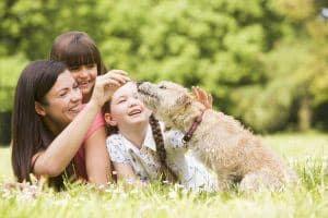 Pies i dziecko: jakiego psa wybrać i jak przyzwyczaić dziecko do nowego psa?