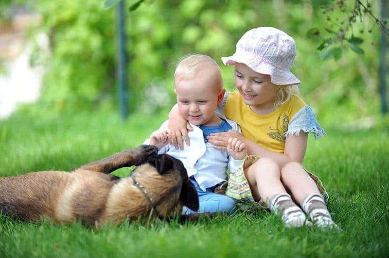 Jak przyzwyczaić psa do dziecka?