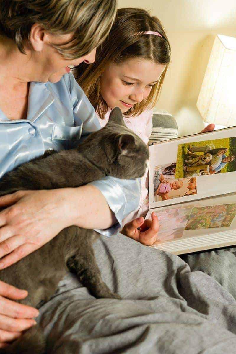 Kot i dziecko w domu