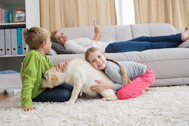 Dlaczego warto wychowywać dzieci z psem?