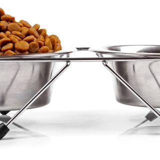 Cukrzyca u psa i kota: dieta