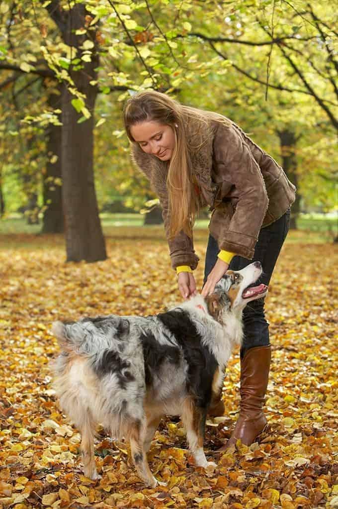 Obserwuj swojego psa: to Ty pierwszy(a) zauważysz syndromy choroby