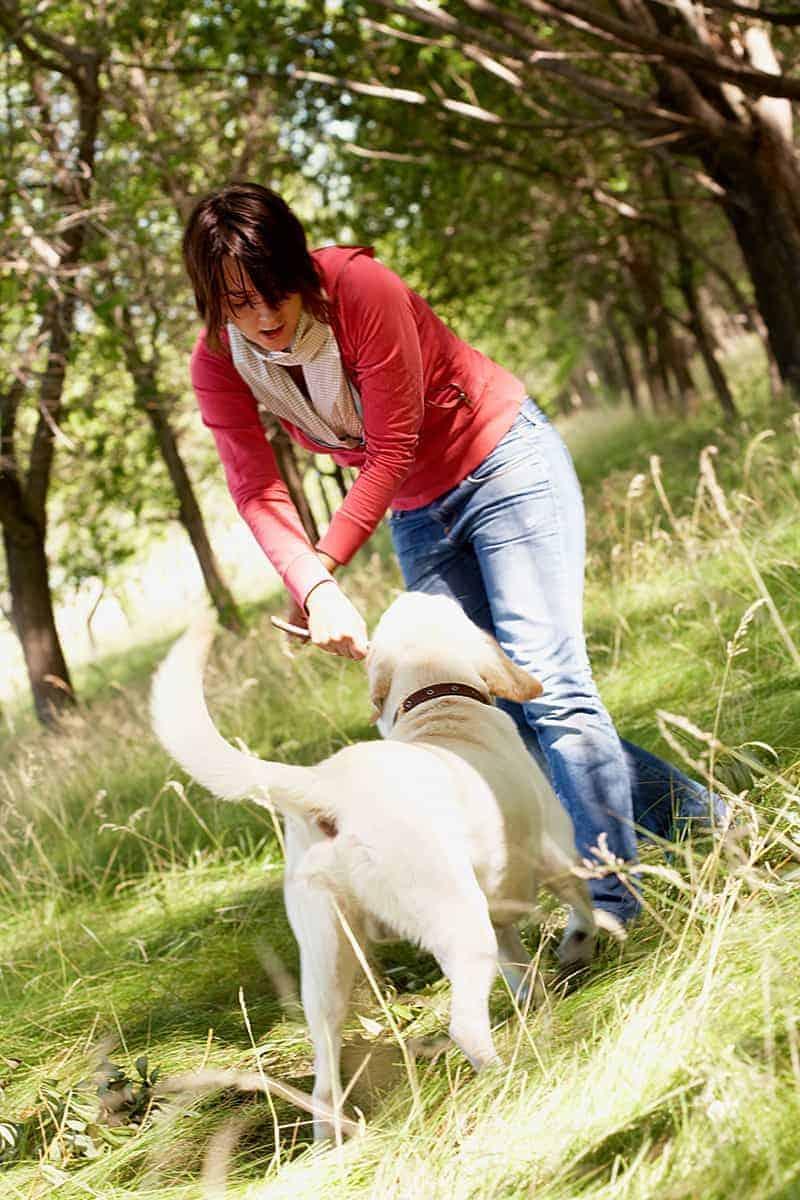 Zabawa wzmacnia więź między psem a człowiekiem