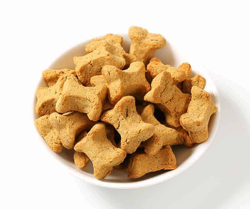 Jak karmić psa?