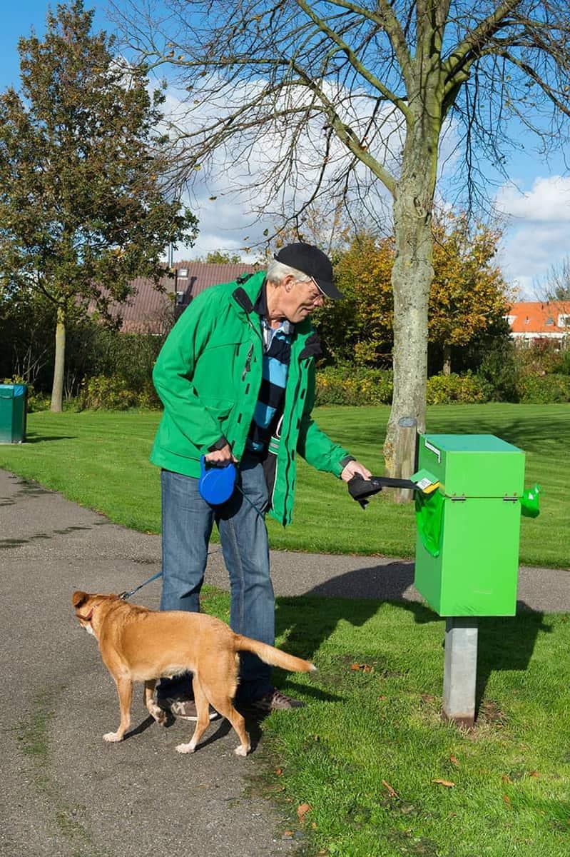 Sprzątanie odchodów po psie ogranicza zanieczyszczenie jajami środowiska