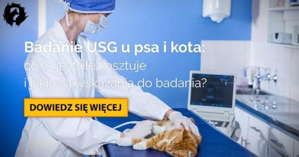 Konieczne jest badanie ultrasonograficzne