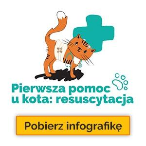 Leki dla sa i kota