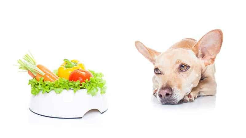 Prebiotyczne pokarmy