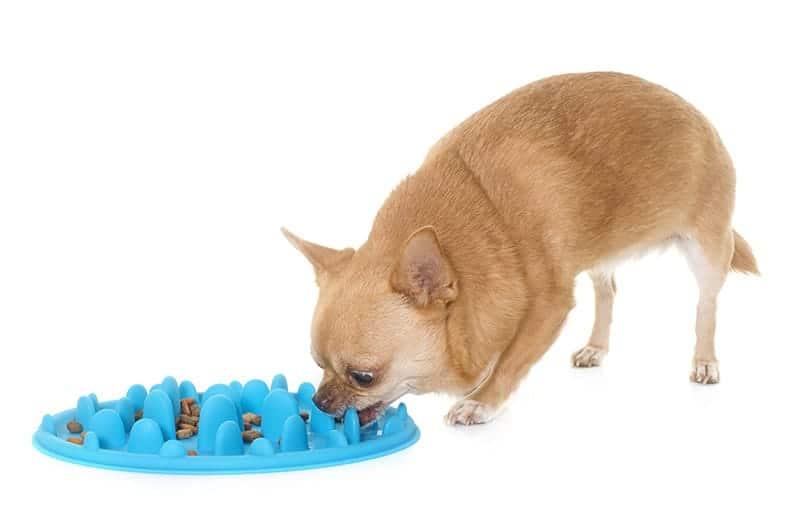 Dieta przy nadwadze