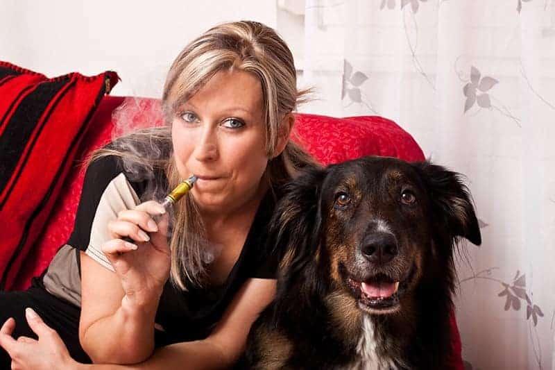 Wpływ palenia na zdrowie psa