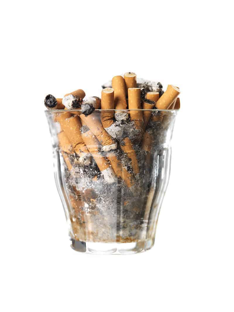 Zatrucie nikotyną u psa i kota