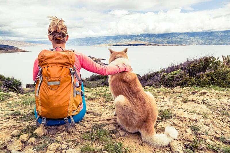 Urlop z psem