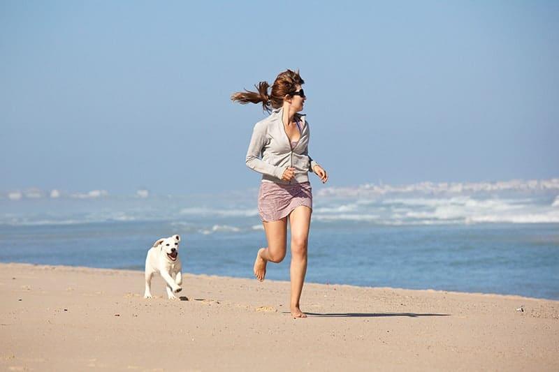 Czy każdy pies potrafi się bawić?