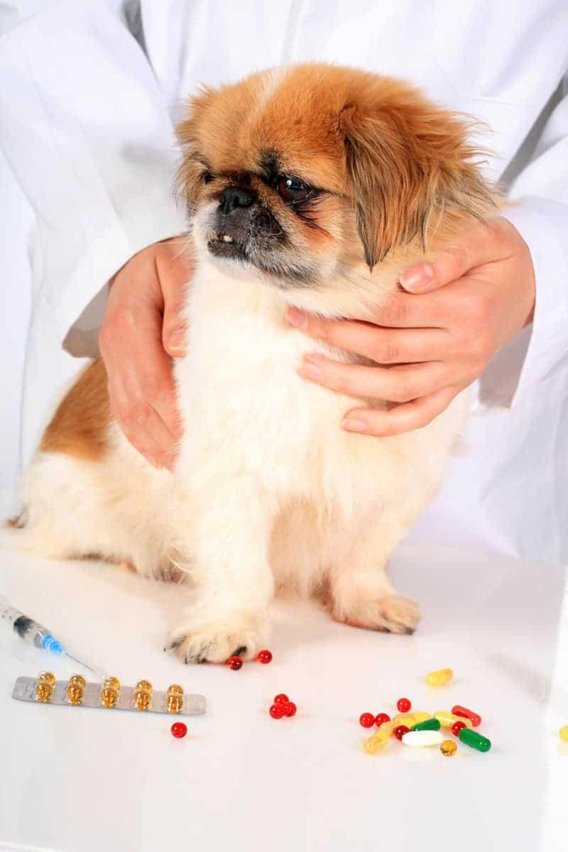 Najczęściej stosowane leki