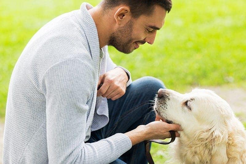Budowanie relacji między opiekunem a psem