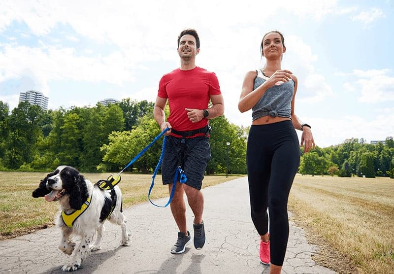 Akcesoria do biegania z psem