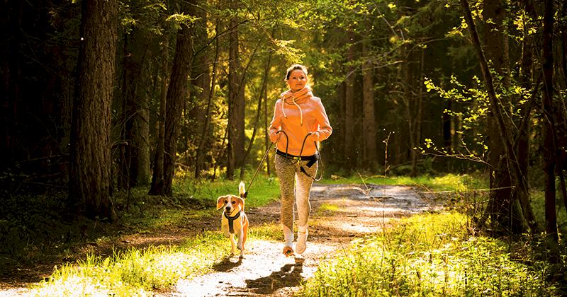 Gdzie biegamy z psami?