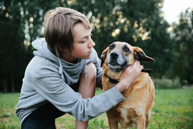 Dlaczego boimy się adopcji psa ze schroniska? ⋆ co w sierści piszczy
