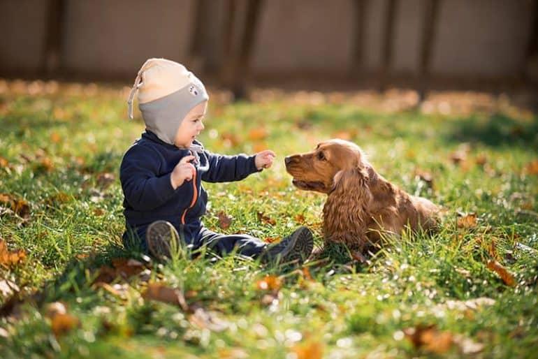Opieka nad psem